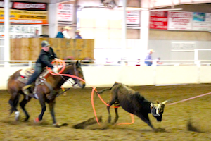 Lucky J Arena Rodeo